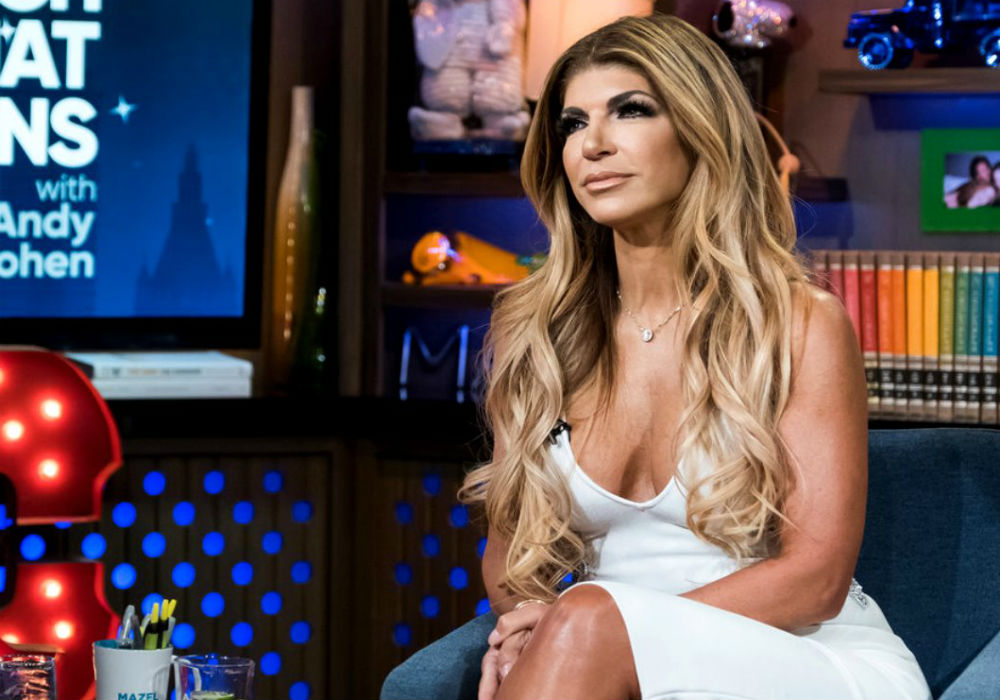 'RHONJ' Star Teresa Giudice's Net Worth Revealed!