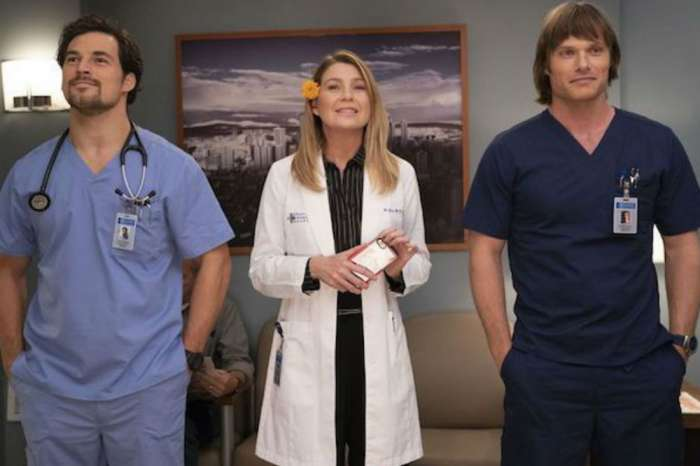 Grey's Anatomy Orders Extra Episodes For Season 15, What Could This All Mean For Meredith?