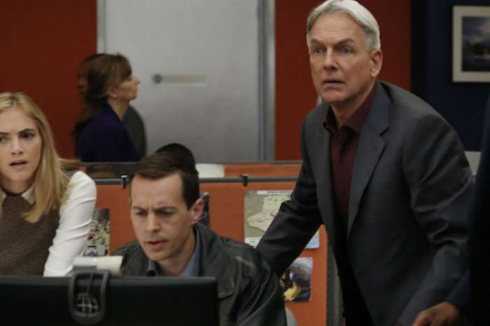 NCIS Canceled After Season 16? Inside The Odds For A Season 17