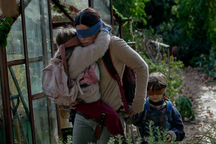 Netflix Issues Warning After Dangerous Challenge Inspired By The Movie Bird Box Becomes Viral!
