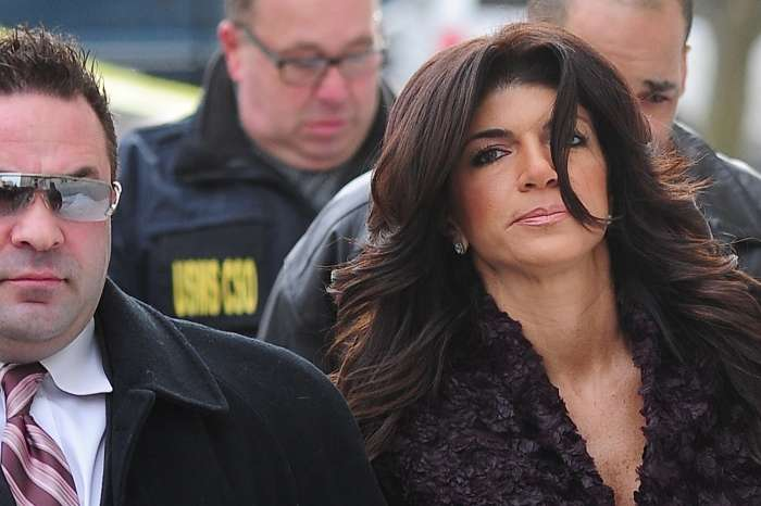 Teresa Giudice Still Can't Entirely Deal With Joe's Deportation, Source Says