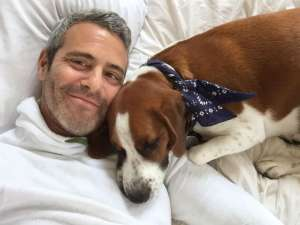 "Andy Cohen Dad Shamed For Letting Dog Eat His Son's Toy, Tells Critics ""Stand Down"""