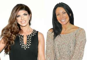 Even Teresa Giudice's Biggest Fans Don't Understand Her Friendship With RHONJ 'Friend' Danielle Staub