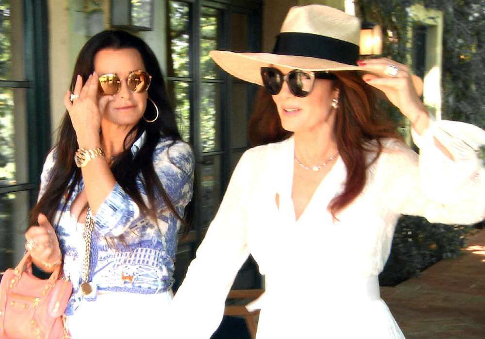 RHOBH Kyle Richards Breaks Down Puppygate - Whose Side Are You On