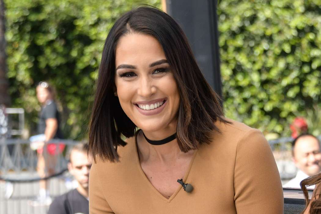 brie-bella-was-originally-against-nikki-dating-artem-because-she-wanted-her-back-with-john-cena