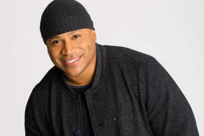 NCIS: LA Star LL Cool J Victorious In Nasty Legal Battle