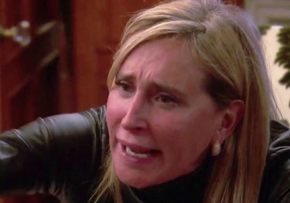 rhony-star-sonja-morgan-breaks-down-her-berkshires-breakdown