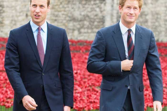 Prince Harry And Prince William Are 'Just Fine' Despite Reports They Are 'Drifting Apart'