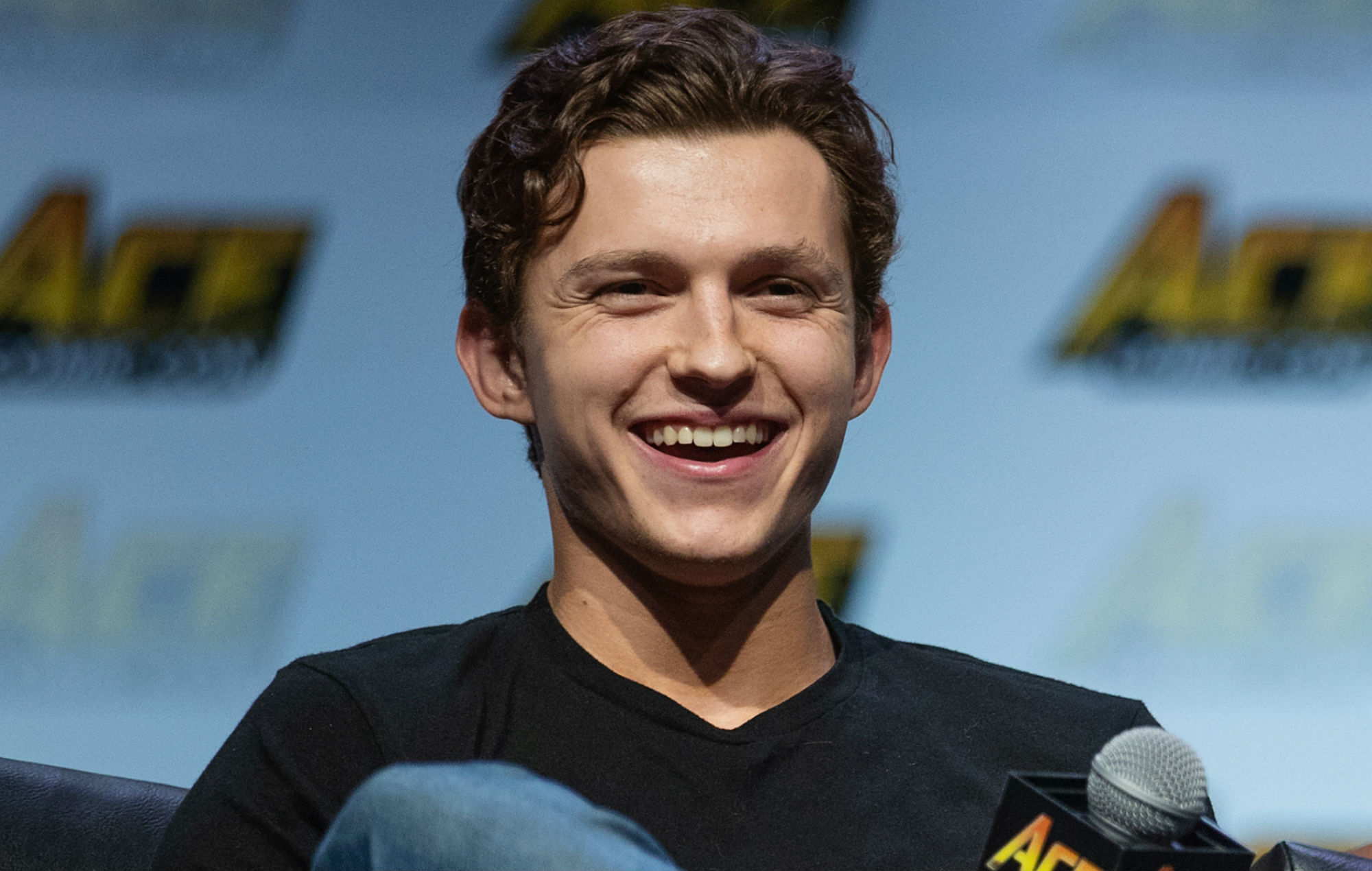 Tom Holland Reveals Scrapped Cameo For 'Spider-Man: Into The Spider-Verse'