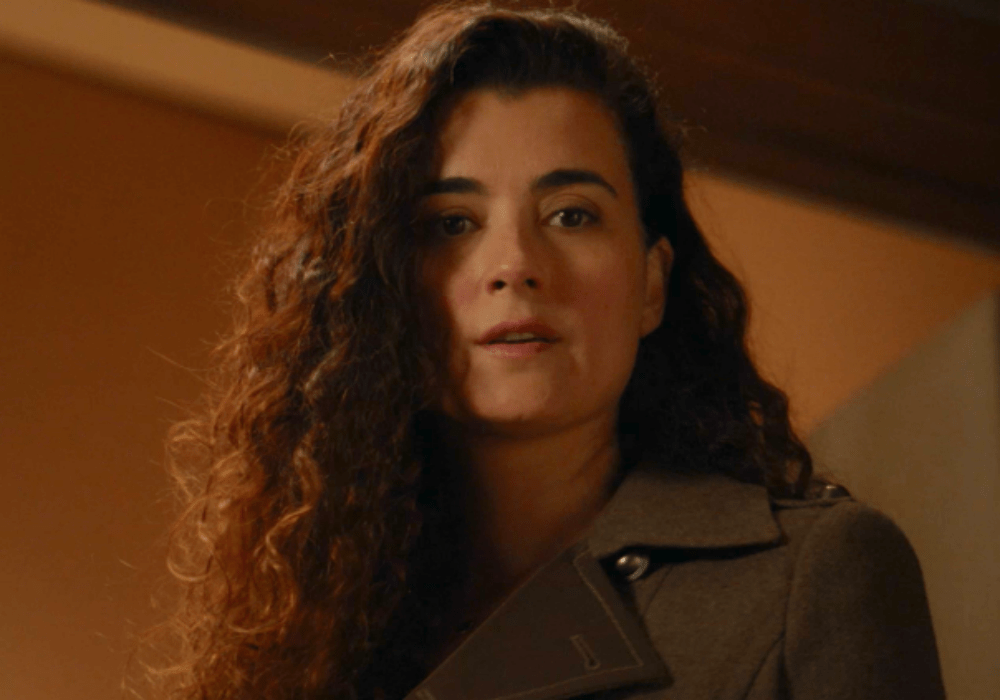 'NCIS' Season 17_ When Will Fans Get To See Cote De Pablo's Ziva Again_