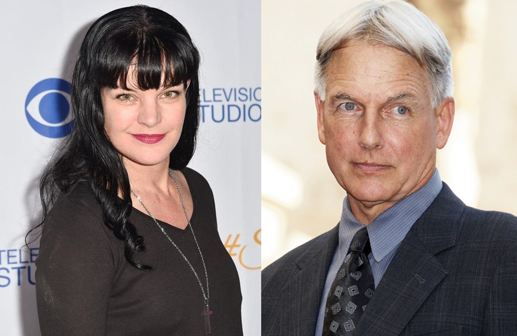 Pauley Perrette Mark Harmon NCIS