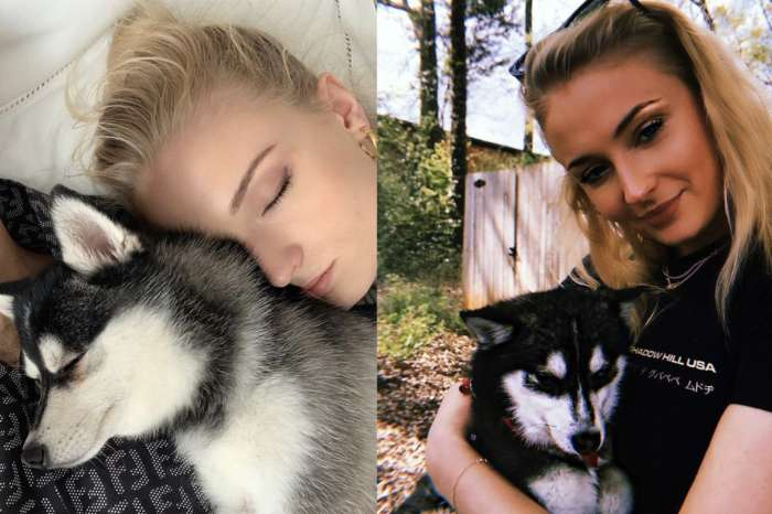 Joe Jonas And Sophie Turner's Dog Dies In Freak Accident -- Emotional Couple Went To Therapy To Deal With Tragic Loss