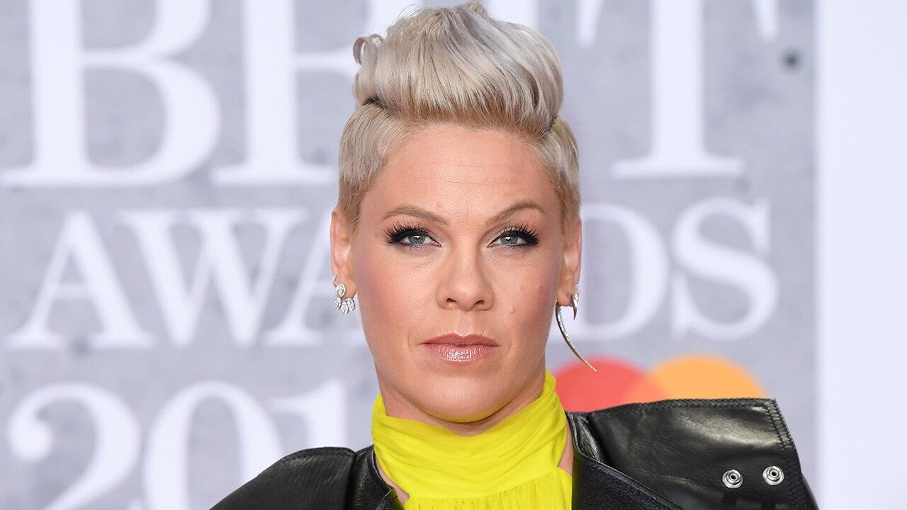 Pink slams 'parenting police' over family trip to the zoo