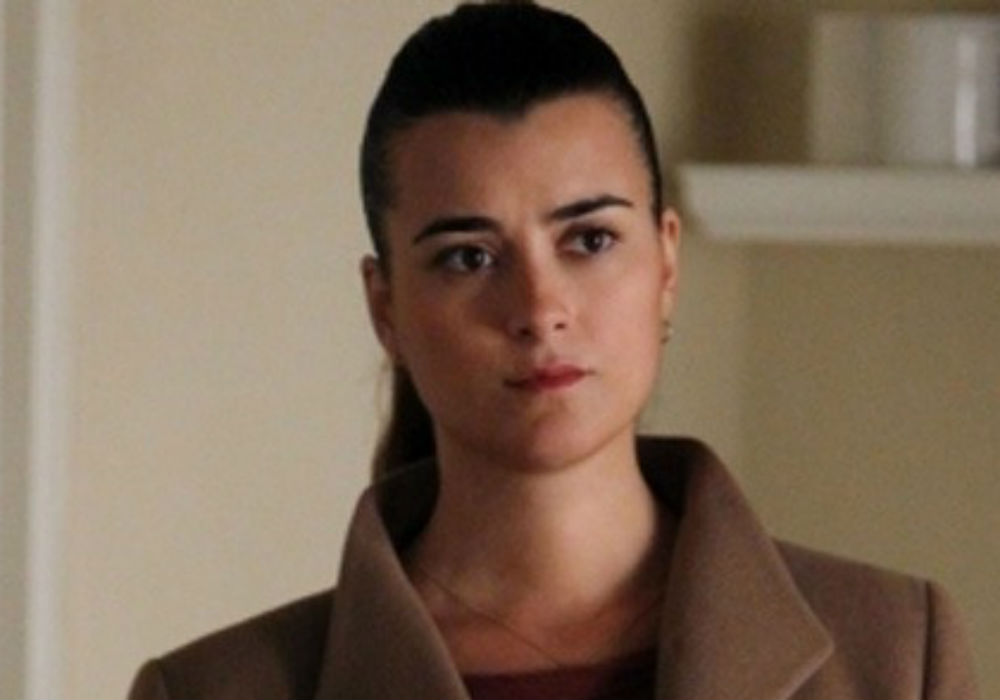 """how-did-ncis-producers-convince-cote-de-pablo-to-return-as-ziva-for-season-17"""