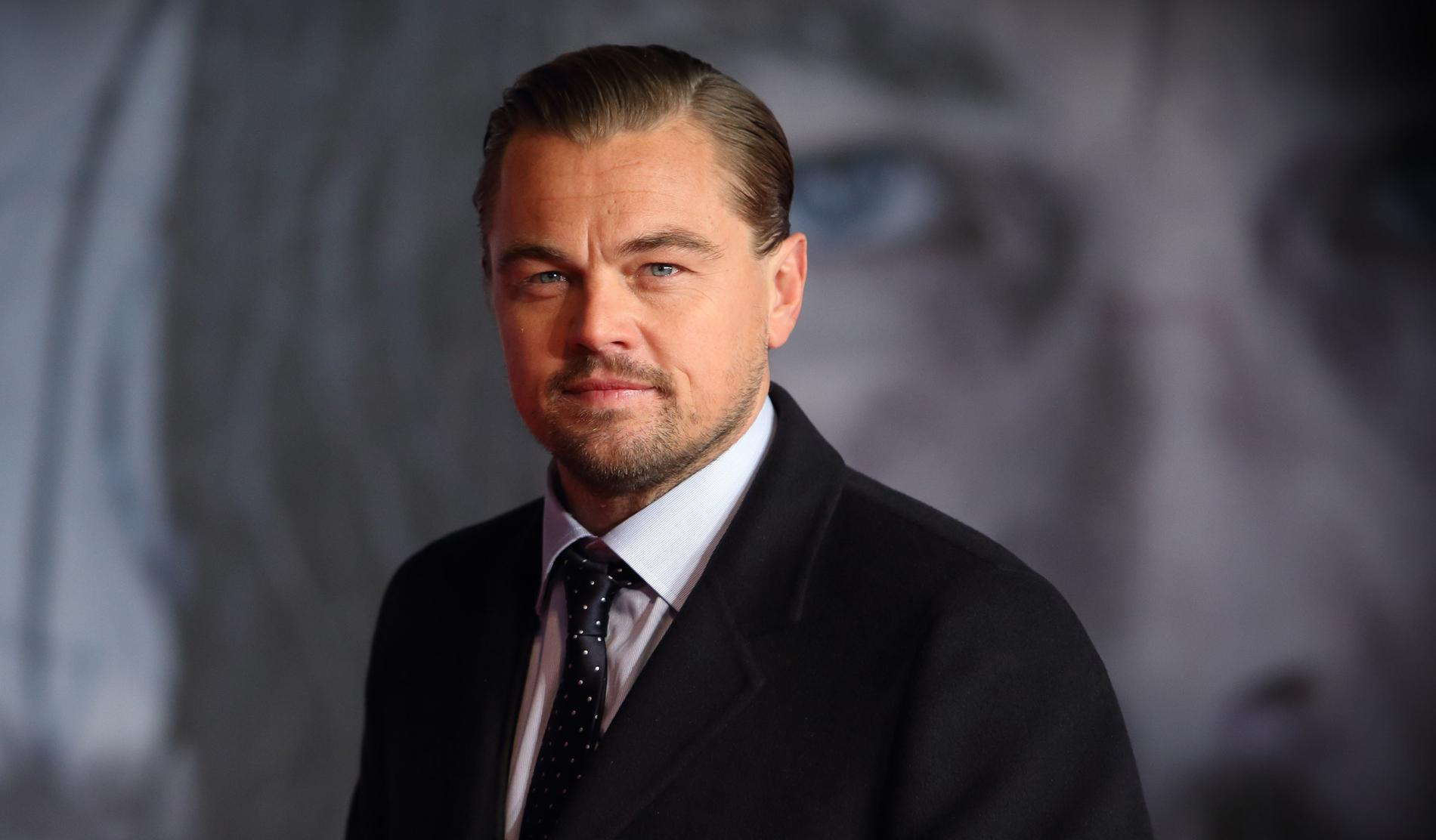 Leonardo DiCaprio's Foundation Gives $5 Million For Combating Amazon Fires