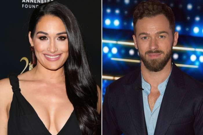 Brie Bella Says That Twin Nikki's Beau Artem And Her Daughter, Birdie, 2 Are 'Best Friends' - 'She's Obsessed' With Him!
