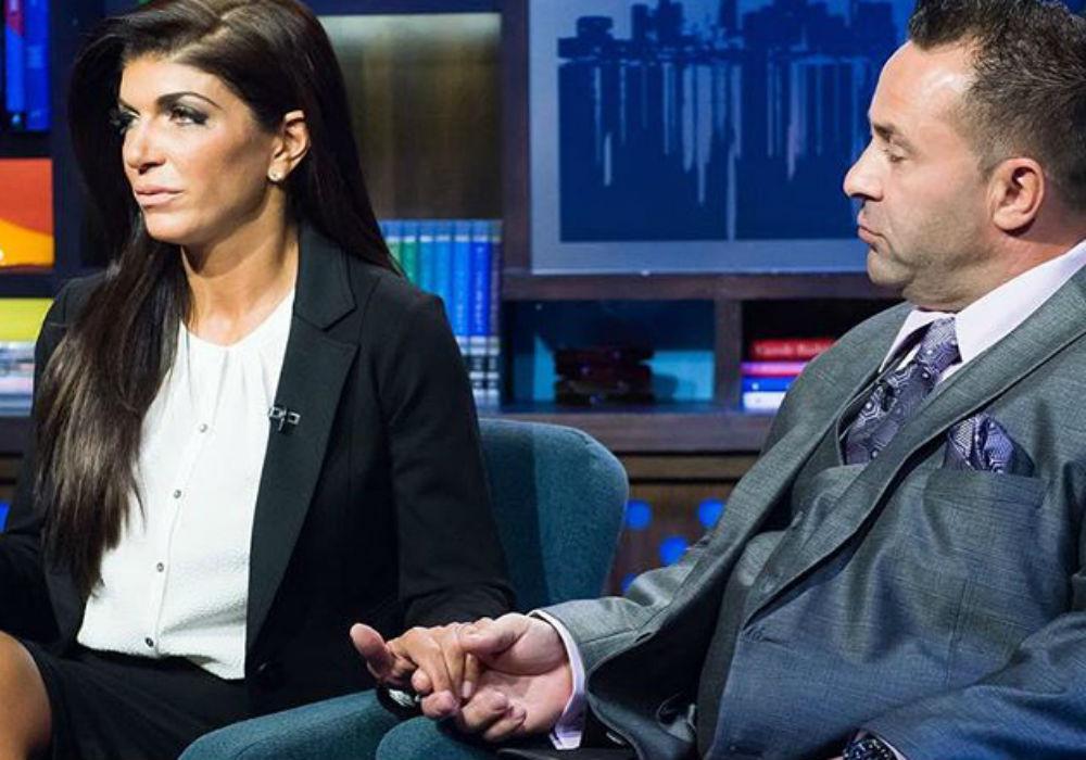 Teresa Giudice Reveals Joe Giudice's Surprising Post-Prison Plans