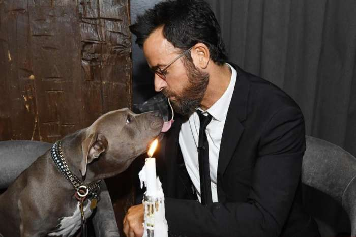 Justin Theroux Recreates Iconic Lady And The Tramp Scene With Rescue Dog Kuma