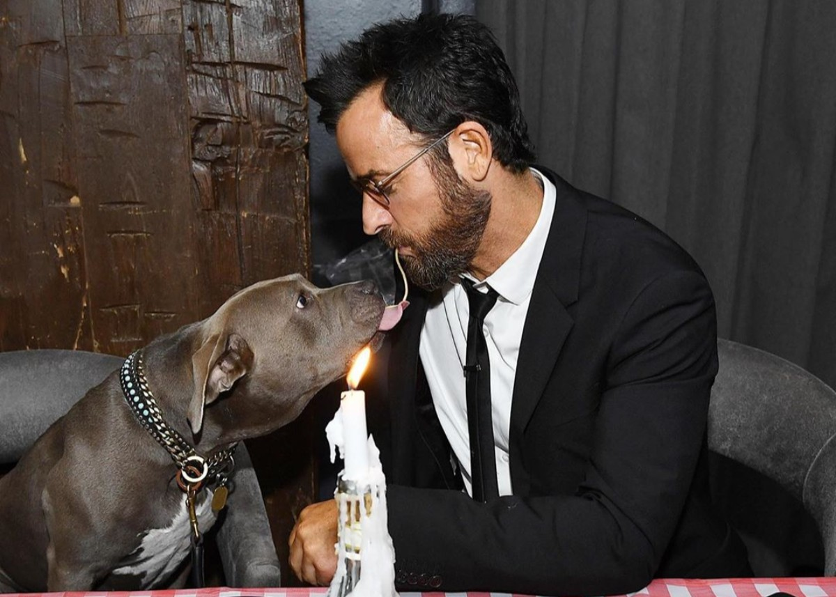 """justin-theroux-recreates-iconic-lady-and-the-tramp-scene-with-rescue-dog-kuma"""