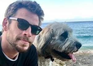 Liam Hemsworth Was Left Discouraged After Miley Cyrus Split