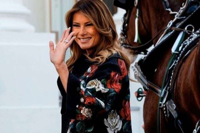 Melania Trump Is Gorgeous In Dolce & Gabbana As White House Recieves Christmas Tree