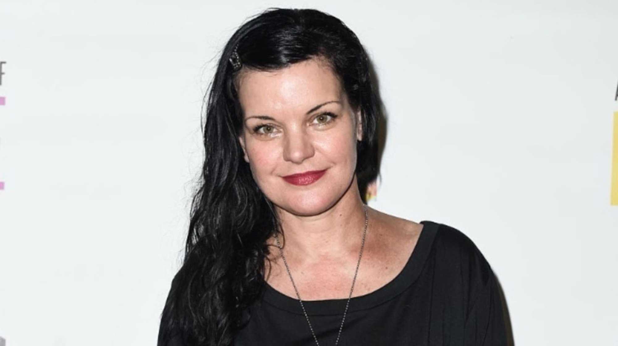 Pauley Perrette NCIS Broke Fake Accounts