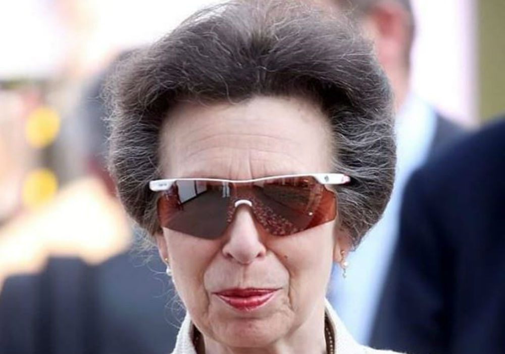 Princess Anne Goes Viral After She Did This To Donald Trump At The NATO Reception At Buckingham Palace