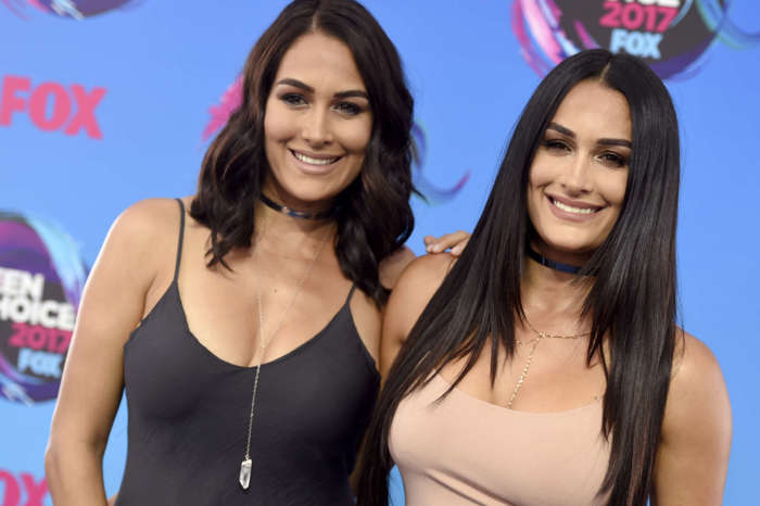 Following Nikki And Brie's Pregnancy Announcement Nikki Adds 'It's Something I've Dreamed Of My Whole Life'