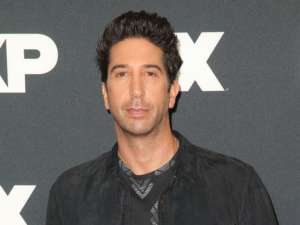 David Schwimmer Claims He Tried For Years To Introduce Women Of Color Onto Friends