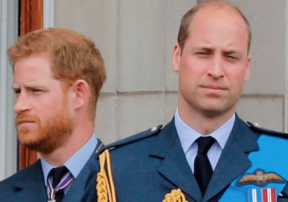 Prince Harry & Prince William Reportedly End Their Two-Year Feud Amid Megxit Drama