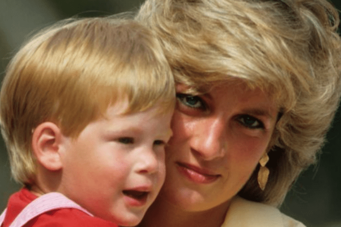 Princess Diana's Former Chef Slams Prince Harry & Meghan Markle, Claims The People's Princess Would Have Been 'Furious' About Megxit