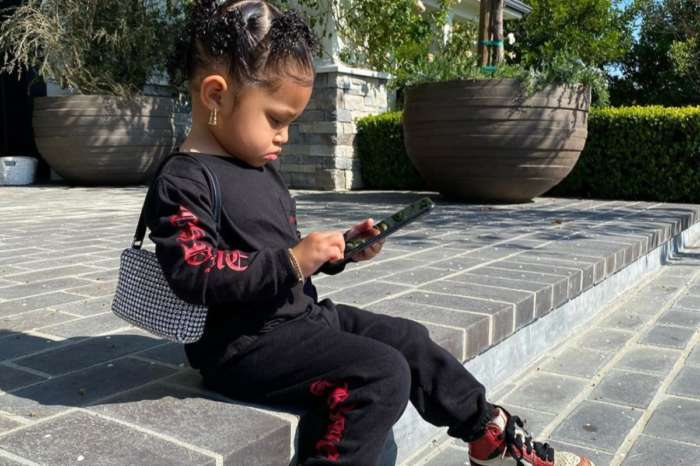 Stormi Webster Wears More Adult-Sized Earrings And Carries A Purse In New Photos Kylie Jenner Shared — Too Grown Up?