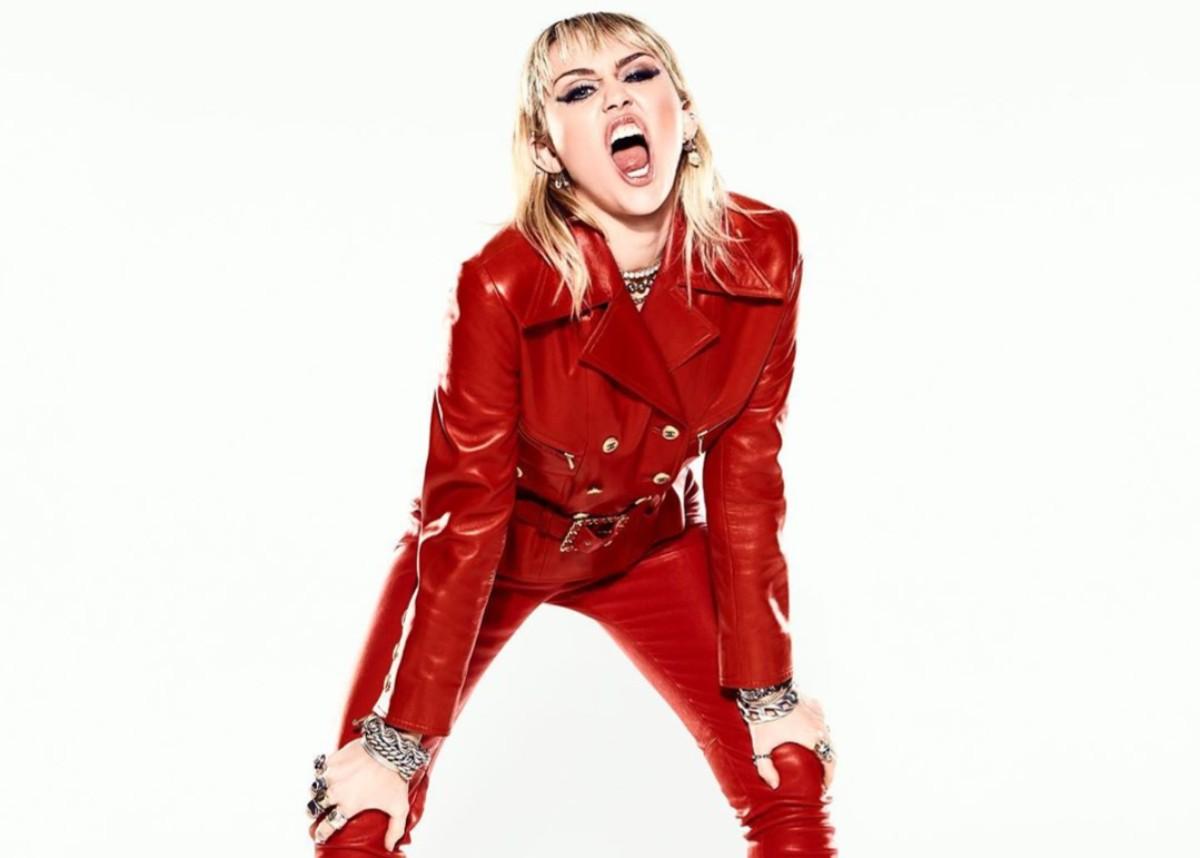 """""""has-miley-cyrus-vowed-to-never-twerk-again-singer-says-twerking-turkey-memes-hurt-her"""""""