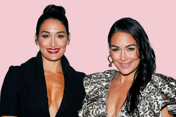 Nikki And Brie Bella Are Sure They'll Give Birth On The Same Day And That They're Having 'Twins!'