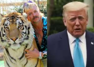 Is President Donald Trump Going To Pardon Tiger King Star Joe Exotic?