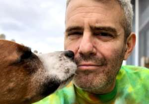 Andy Cohen Sadly Says Goodbye To Rescue Pup Wacha, Rehomes The Dog To Keep His Son Safe