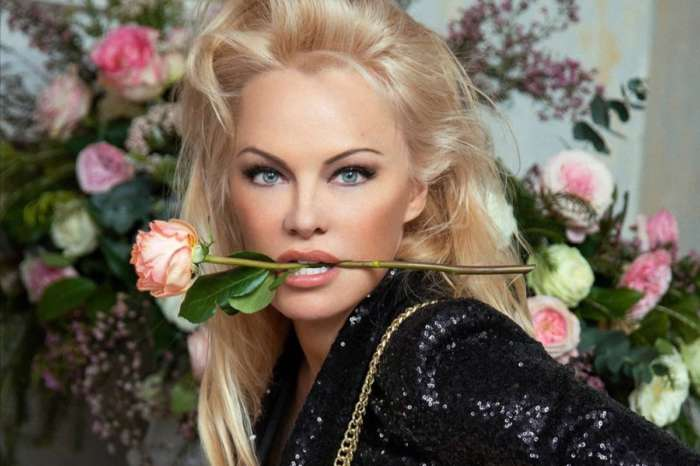 Pamela Anderson Drops Her Clothes For New Vegan Handbag Ashoka Paris Campaign — Fans Are In Awe