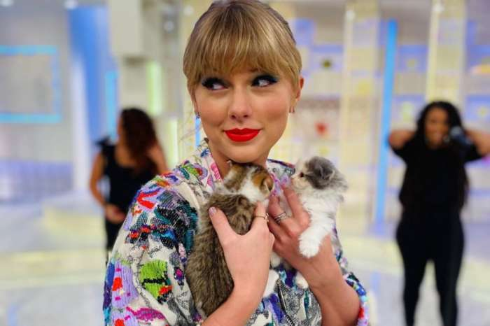 Taylor Swift's Best Photos Of Cats