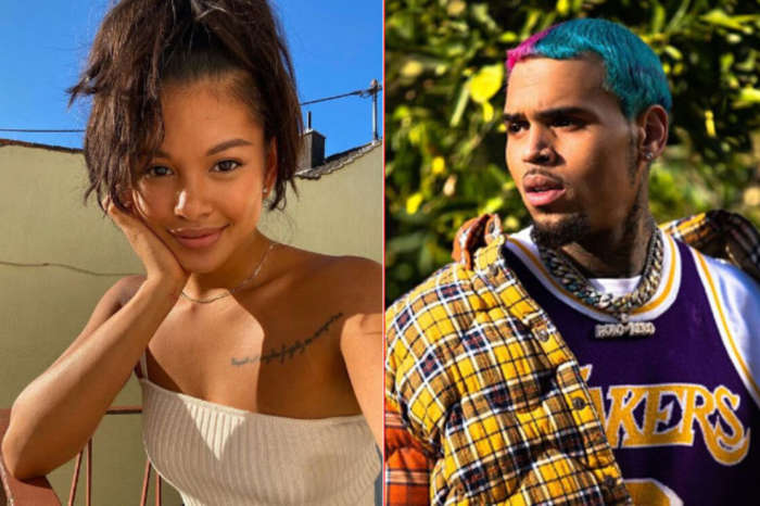 Ammika Harris And Chris Brown Are Celebrating Aeko's Eight Month Anniversary! See The Gorgeous Photo