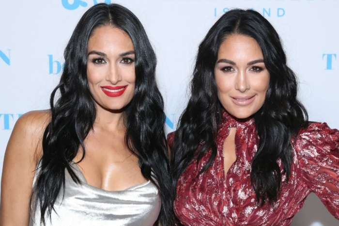 Nikki And Brie Bella Introduce Their Sons In First Pics And Reveal Their Names!