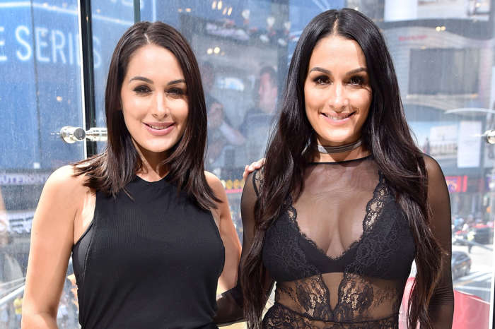 Nikki And Brie Bella Posts Adorable Pics With Their Baby Boys!