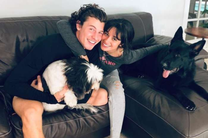 Camila Cabello Cuts Her Hair And Shawn Mendes Snaps A Photo — See The Look