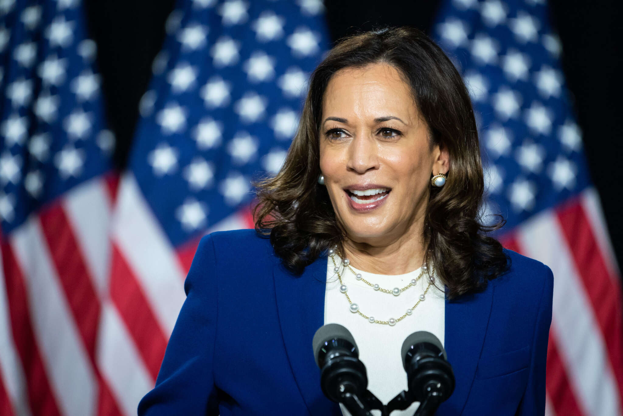 """""""kamala-harris-insists-that-you-dont-meet-hate-with-hate-while-discussing-the-deep-divide-in-america"""""""