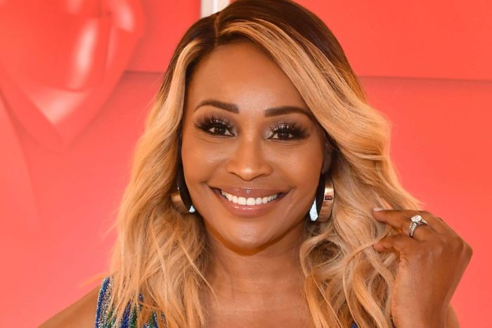 Cynthia Bailey Calls People To Vote On January 5th - See Her Message Here