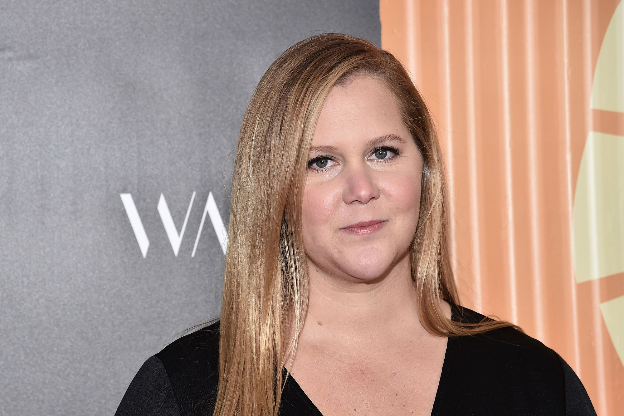 amy-schumer-opens-up-about-adding-to-the-family-after-struggling-with-ivf