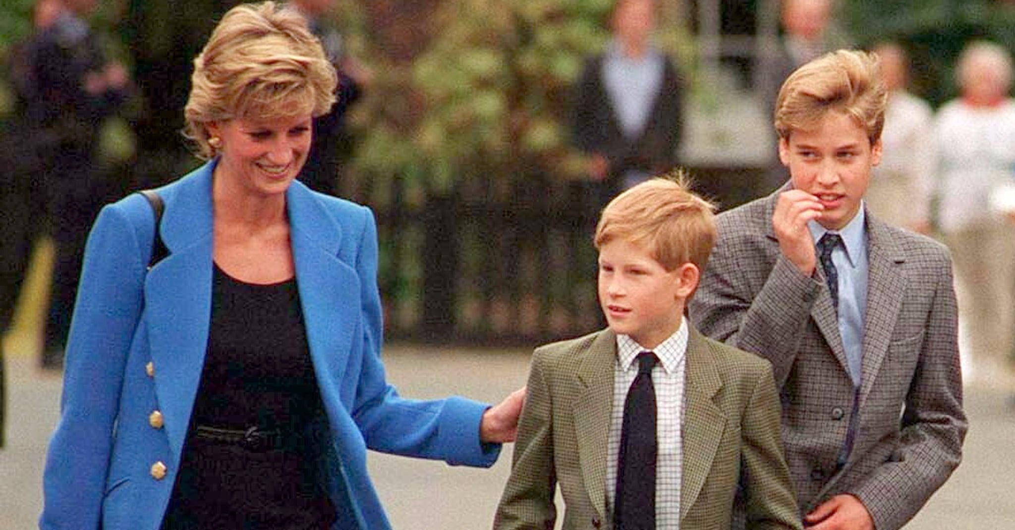 """princes-harry-and-williams-rift-royal-expert-says-princess-diana-would-be-extremely-disappointed"""